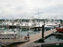 Costa Rica is one of the most popular sport fishing destinations in the world. This is a photo of the Los Suenos Marina, Herradura.