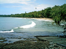 View of the beach in Cahuita National Park.