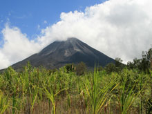 The view of Volcano Arenal from the national park.