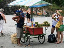 Fresh coconuts (pipas) are sold on the beach.
