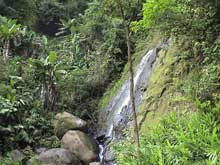 A small waterfall in Monteverde.