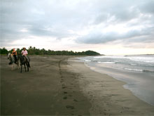 Horseback riding along the deserted beach.