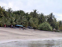 Palm trees offer shade at the beach of Samara Beach.