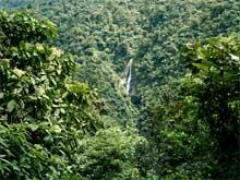Der Grossteil des Tapanti Nationalparks ist  nicht begehbar.
