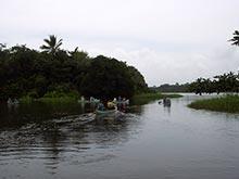Mit dem Kanu kann man die Kanäle Tortugueros erkunden.