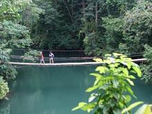 Vom Ort kann man mehrstündige Wanderungen in den Corcovado Nationalpark unternehmen.