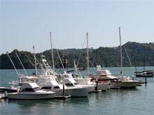 Golfito ist ein beliebter Ausgangspunkt zum Sportfischen.