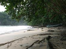 Der helle Sandstrand von Punta Uva.