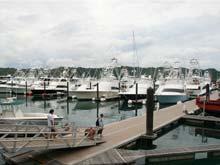 Costa Rica es un destino muy popular para la pesca deportiva. Vista sobre la Marina Los Sueños, ubicada en Playa Herradura de Garabito.