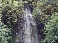 Una pequeña cascada en el Parque Nacional Tapantí.