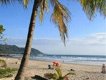 Bordeada por lindas palmeras, la playa es famosa por su fuerte oleaje que permite la práctica del surf.