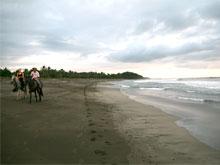En Playa Junquillal es posible montar a caballo por una playa desierta.