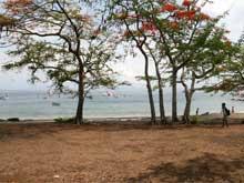 Los botel anclados en la bahía de Playa Ocotal.