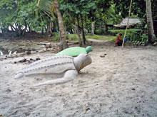 La playa de Puerto Viejo de Talamanca.