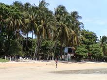La playa de Playa Tamarindo está cubierta por palmeras.